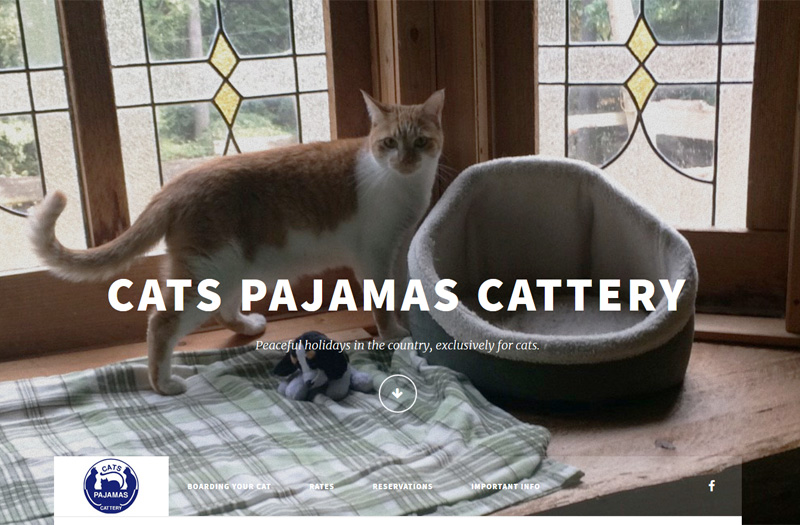 Cats Pajamas Cattery homepage